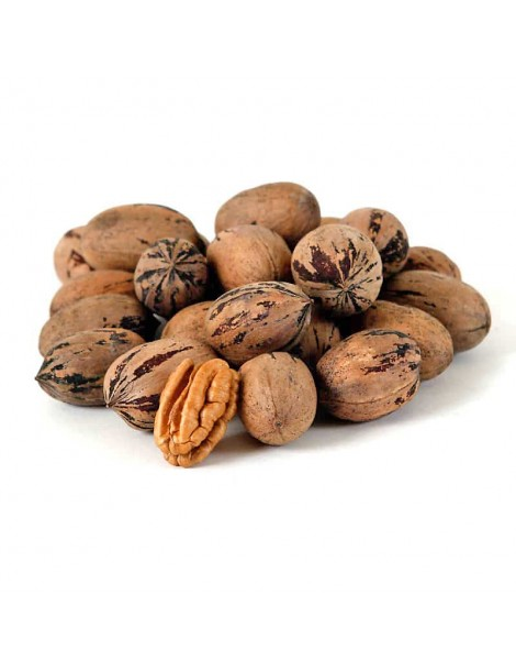 Pecans in Shell (small size) (500gr)