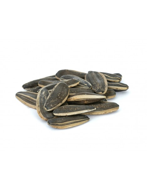 Plain (Raw) Sunflower Seeds (500gr)